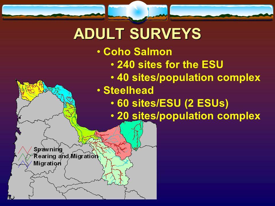 Coho Salmon 240 sites for the ESU 40 sites/population complex Steelhead 60 sites/ESU (2 ESUs) 20 sites/population complex ADULT SURVEYS