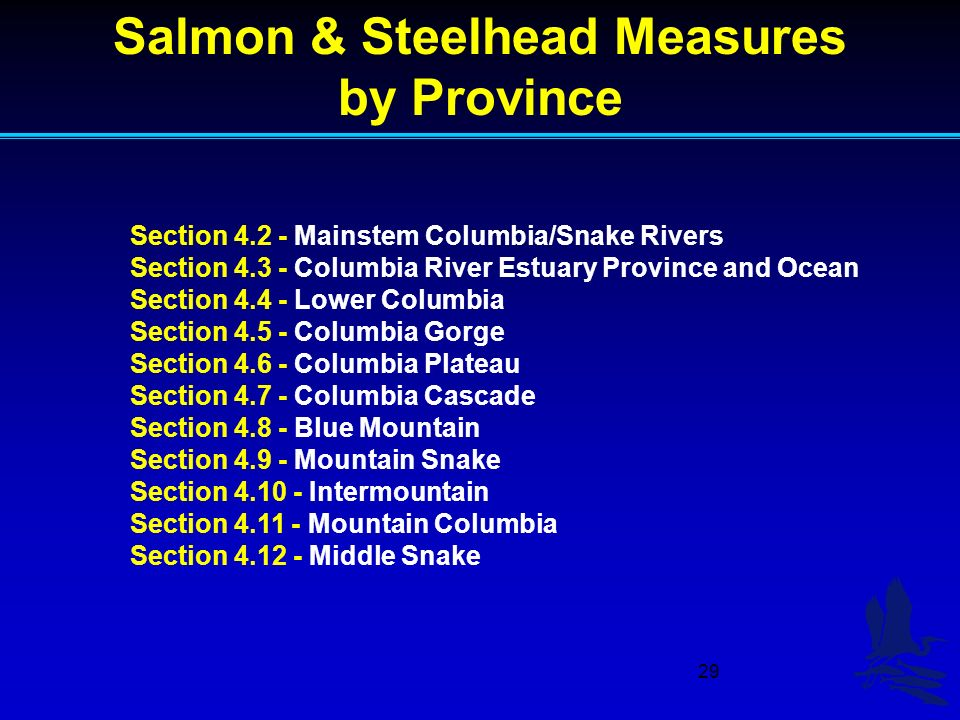 29 Section Mainstem Columbia/Snake Rivers Section Columbia River Estuary Province and Ocean Section Lower Columbia Section Columbia Gorge Section Columbia Plateau Section Columbia Cascade Section Blue Mountain Section Mountain Snake Section Intermountain Section Mountain Columbia Section Middle Snake Salmon & Steelhead Measures by Province