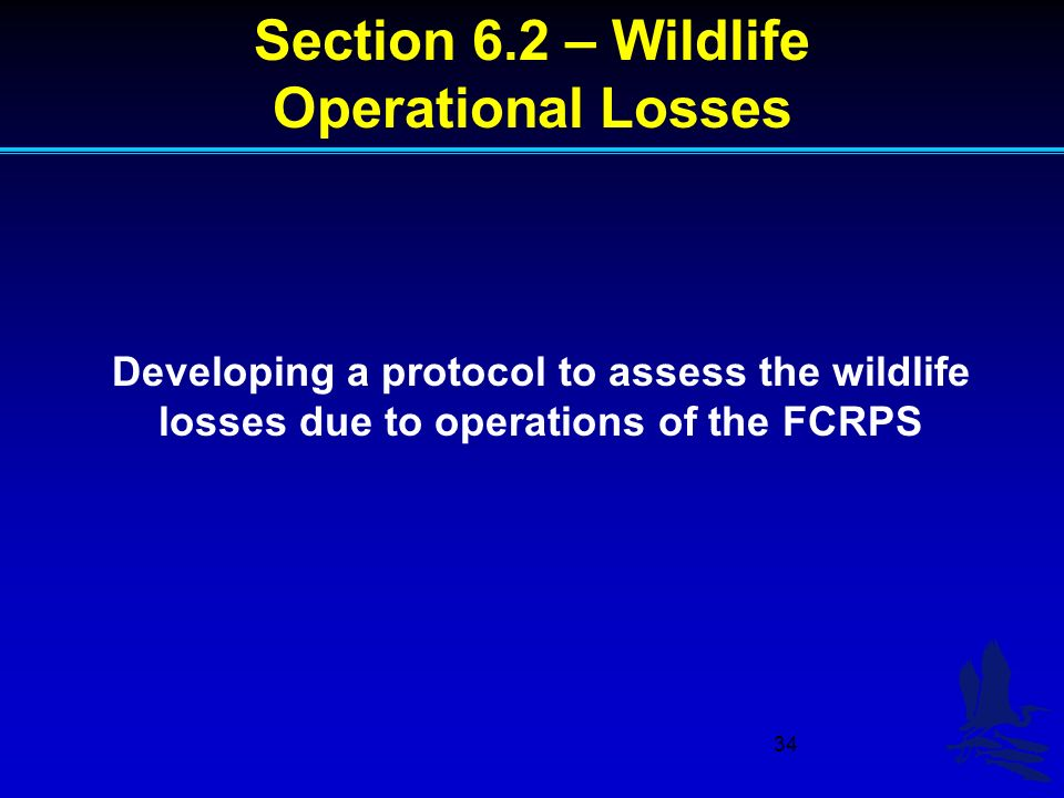 34 Developing a protocol to assess the wildlife losses due to operations of the FCRPS Section 6.2 – Wildlife Operational Losses