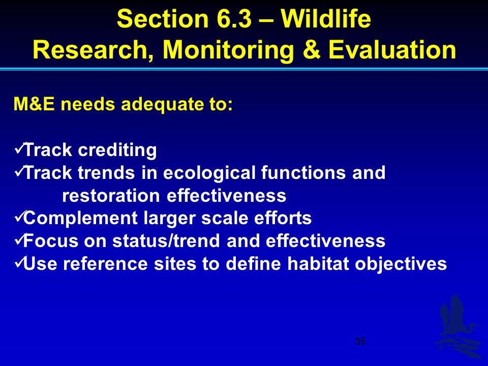 35 M&E needs adequate to: Track crediting Track trends in ecological functions and restoration effectiveness Complement larger scale efforts Focus on status/trend and effectiveness Use reference sites to define habitat objectives Section 6.3 – Wildlife Research, Monitoring & Evaluation