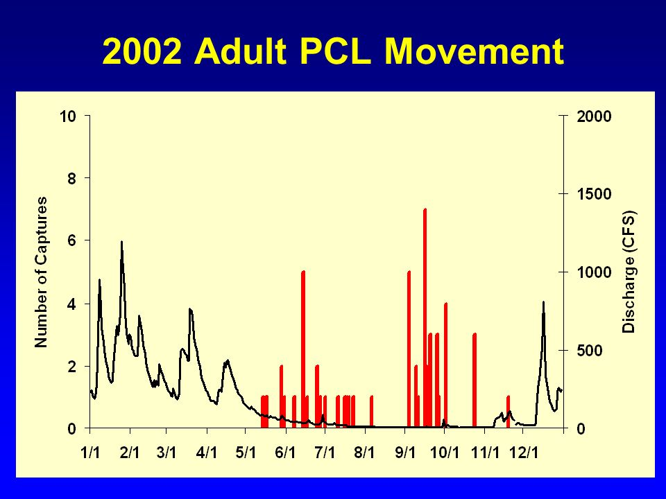 2002 Adult PCL Movement