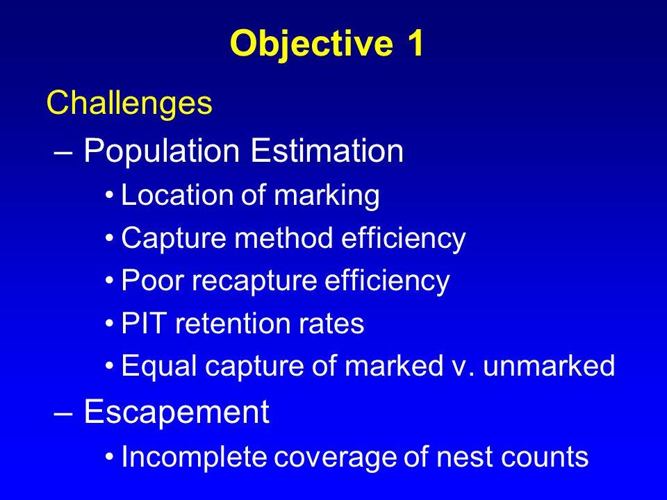 Objective 1 Challenges –Population Estimation Location of marking Capture method efficiency Poor recapture efficiency PIT retention rates Equal captur