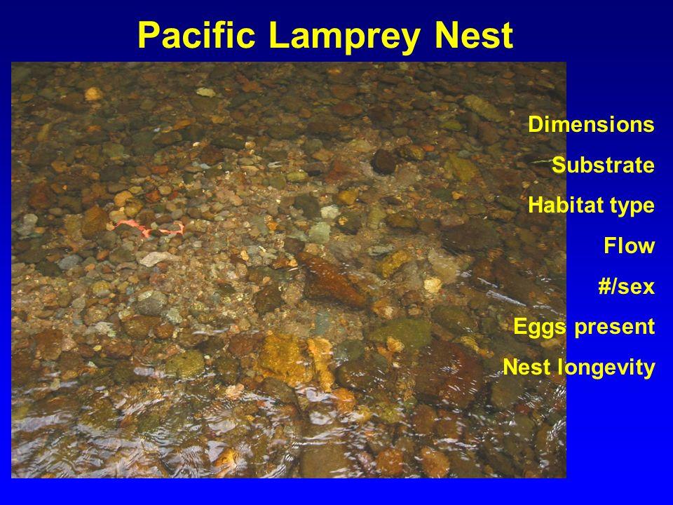 Pacific Lamprey Nest Dimensions Substrate Habitat type Flow #/sex Eggs present Nest longevity