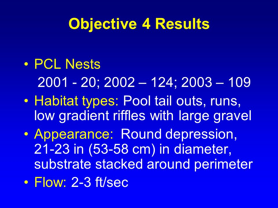 Objective 4 Results PCL Nests 2001 - 20; 2002 – 124; 2003 – 109 Habitat types: Pool tail outs, runs, low gradient riffles with large gravel Appearance