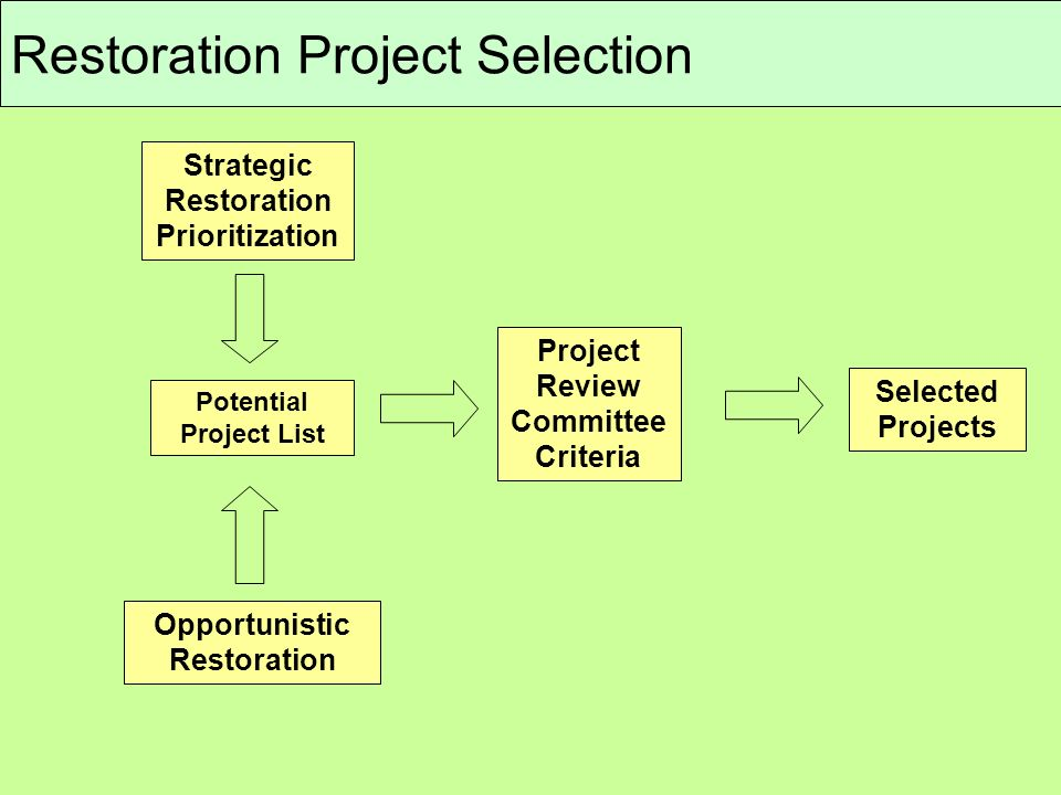Restoration Project Selection Strategic Restoration Prioritization Opportunistic Restoration Project Review Committee Criteria Selected Projects Potential Project List