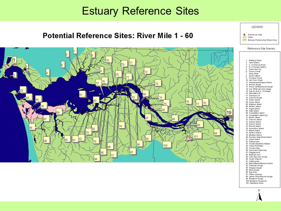 Estuary Reference Sites