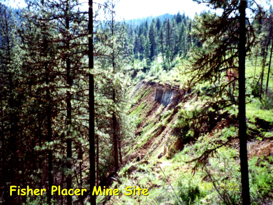 Fisher Placer Mine Site