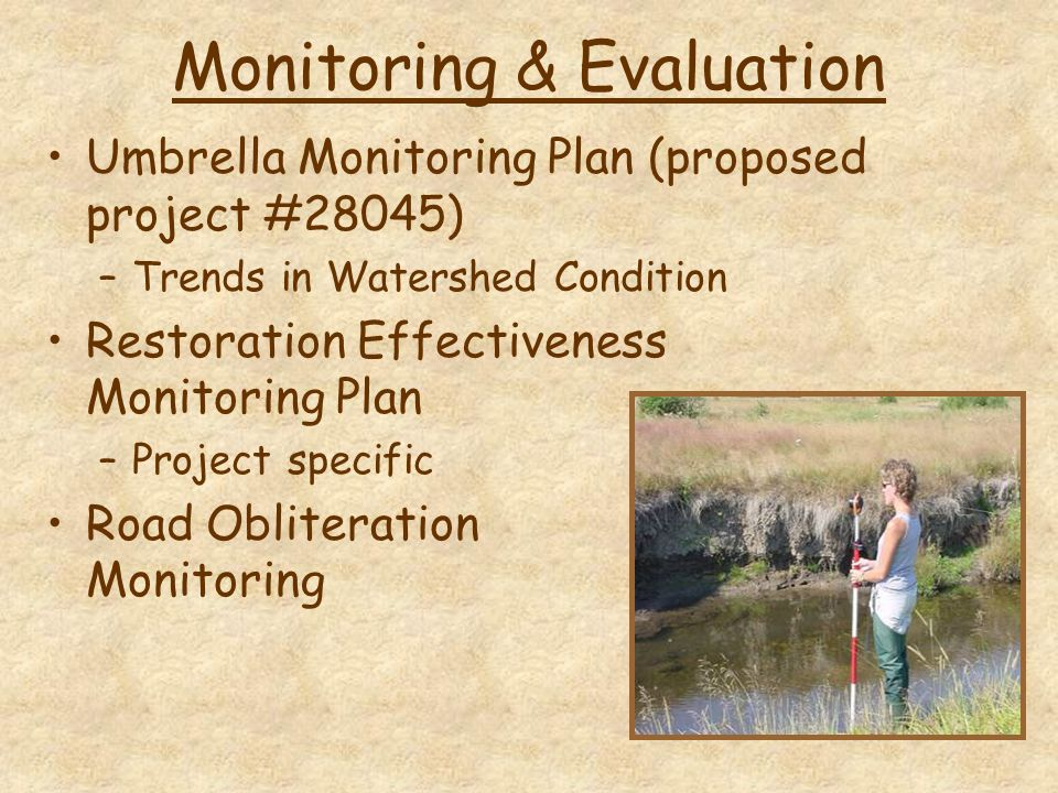 Monitoring & Evaluation Umbrella Monitoring Plan (proposed project #28045) –Trends in Watershed Condition Restoration Effectiveness Monitoring Plan –Project specific Road Obliteration Monitoring
