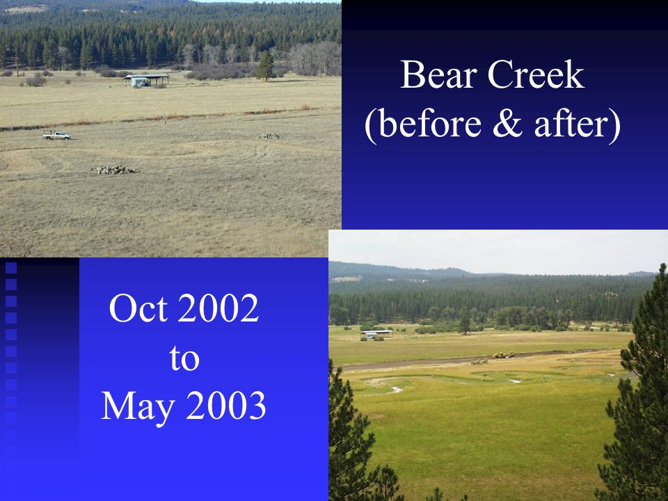 Bear Creek (before & after) Oct 2002 to May 2003