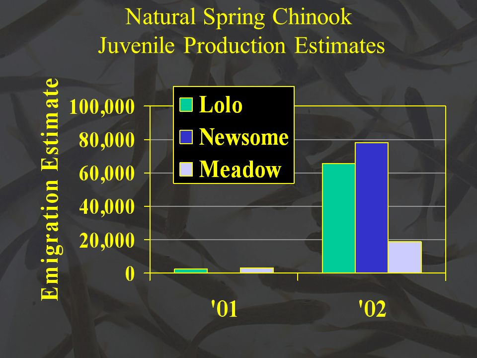 Natural Spring Chinook Juvenile Production Estimates