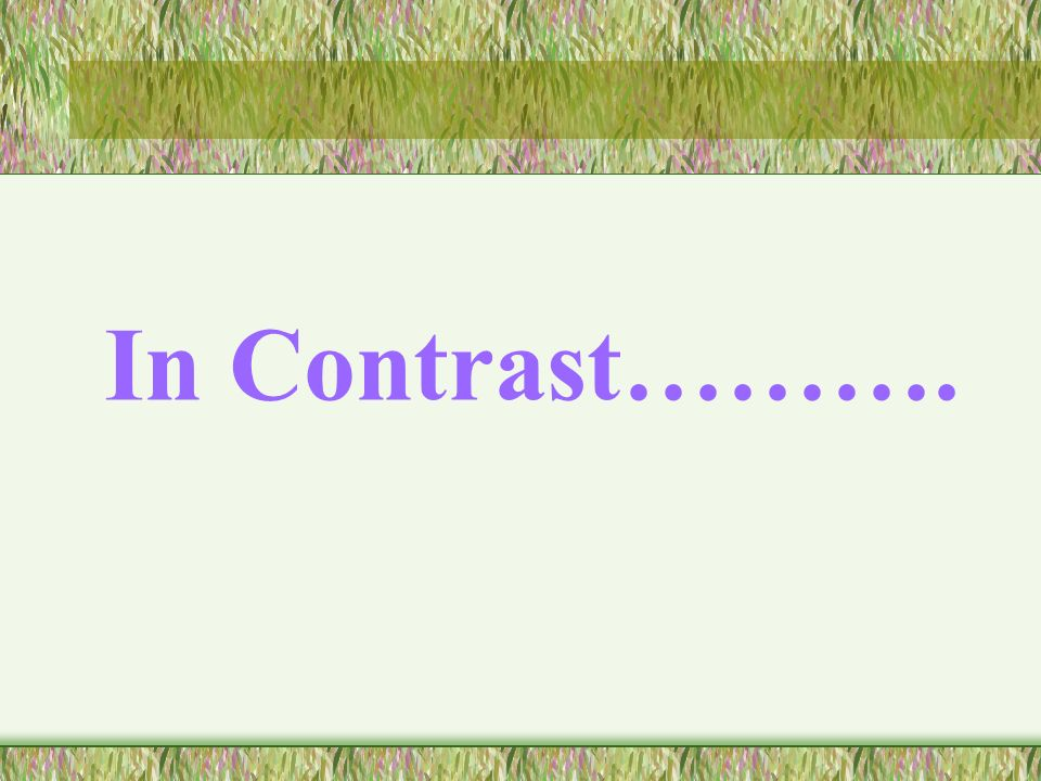 In Contrast……….
