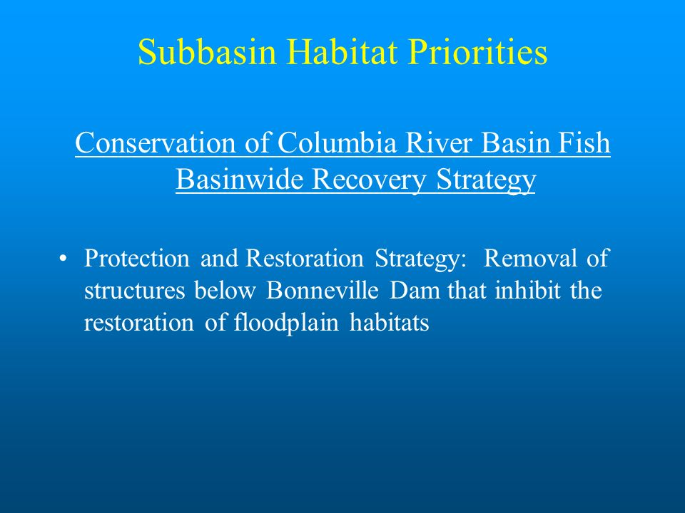 Subbasin Habitat Priorities Conservation of Columbia River Basin Fish Basinwide Recovery Strategy Protection and Restoration Strategy: Removal of stru