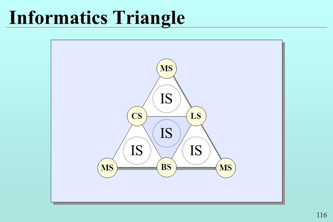 116 Informatics Triangle BS LSCS MS IS