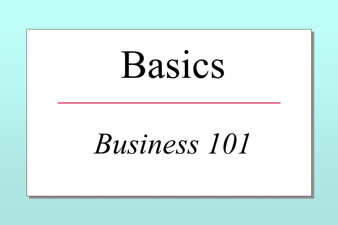 Basics Business 101