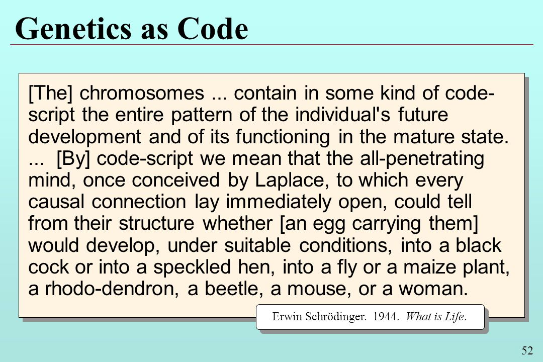52 Genetics as Code [The] chromosomes... contain in some kind of code- script the entire pattern of the individual's future development and of its fun