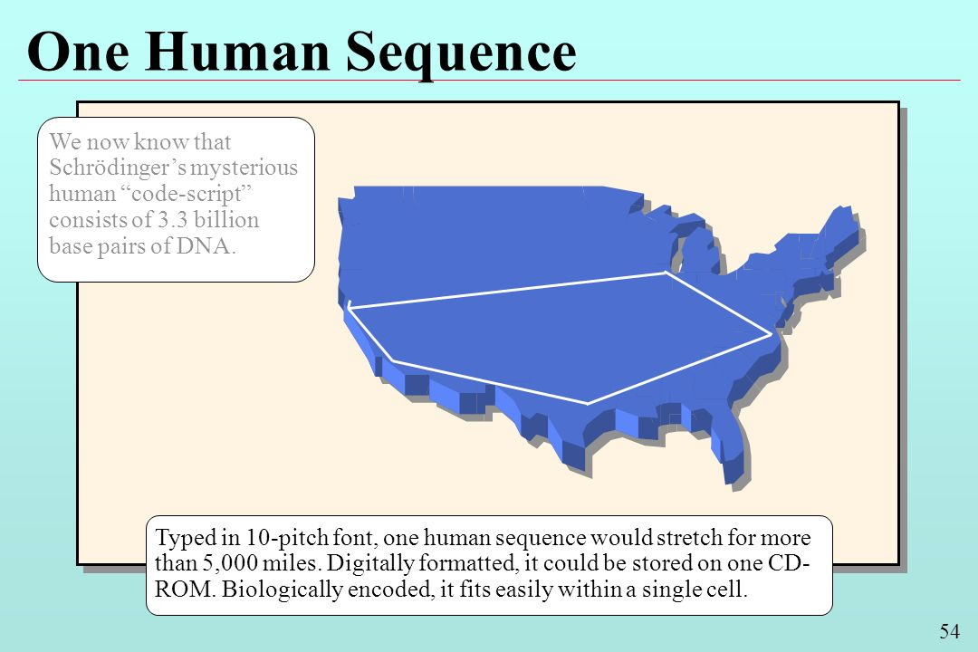54 One Human Sequence Typed in 10-pitch font, one human sequence would stretch for more than 5,000 miles. Digitally formatted, it could be stored on o