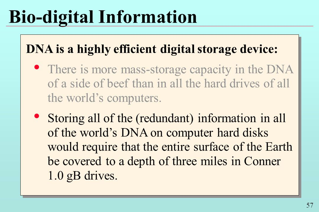 57 Bio-digital Information DNA is a highly efficient digital storage device: There is more mass-storage capacity in the DNA of a side of beef than in