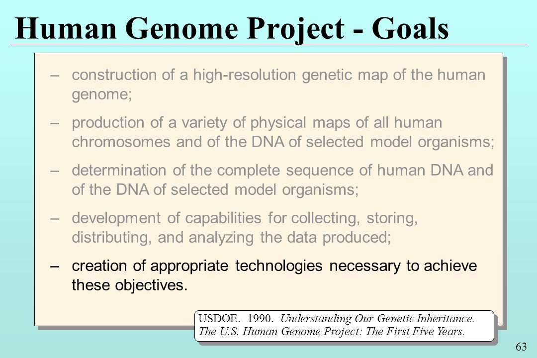 63 Human Genome Project - Goals –construction of a high-resolution genetic map of the human genome; –production of a variety of physical maps of all human chromosomes and of the DNA of selected model organisms; –determination of the complete sequence of human DNA and of the DNA of selected model organisms; –development of capabilities for collecting, storing, distributing, and analyzing the data produced; –creation of appropriate technologies necessary to achieve these objectives.