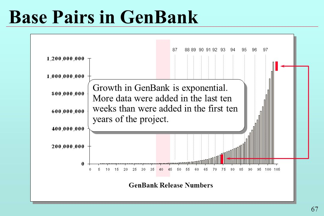 67 Base Pairs in GenBank GenBank Release Numbers 9493929190898887959697 Growth in GenBank is exponential. More data were added in the last ten weeks t