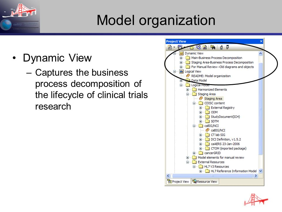 Model organization Dynamic View –Captures the business process decomposition of the lifecycle of clinical trials research