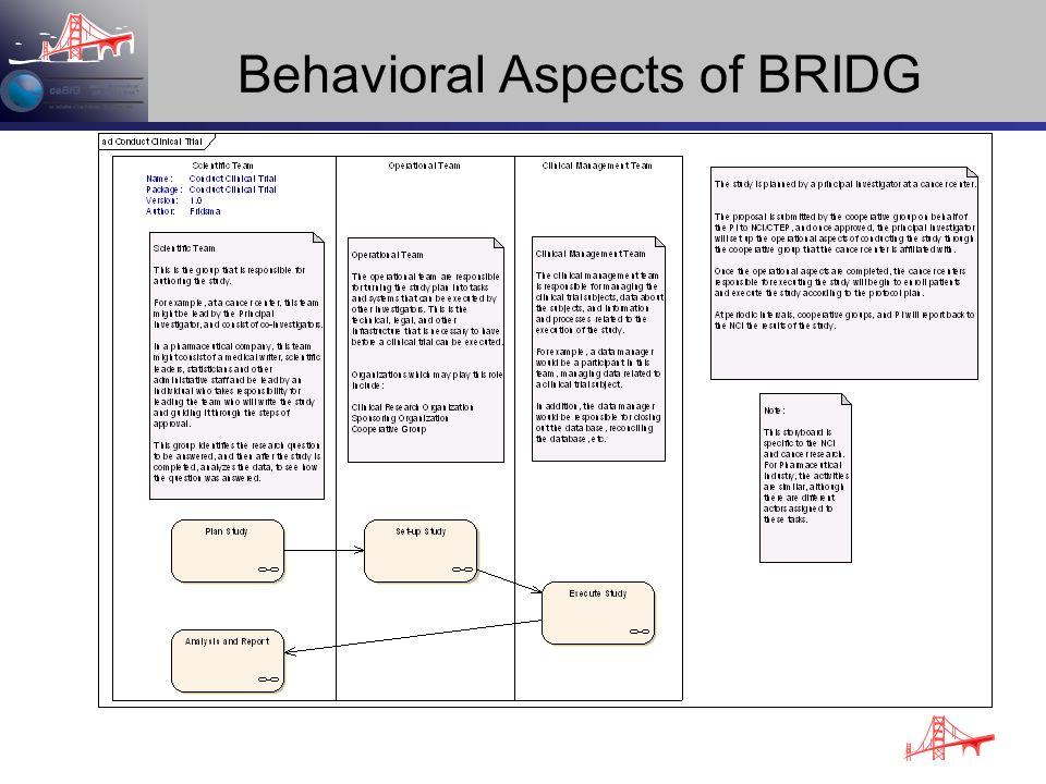Behavioral Aspects of BRIDG