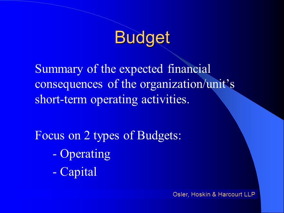 Budget Summary of the expected financial consequences of the organization/units short-term operating activities.