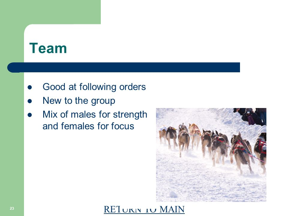 RETURN TO MAIN 23 Team Good at following orders New to the group Mix of males for strength and females for focus