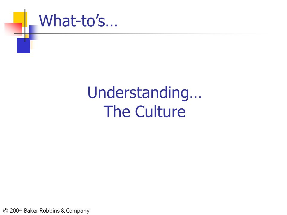 © 2004 Baker Robbins & Company Understanding… The Culture What-tos…
