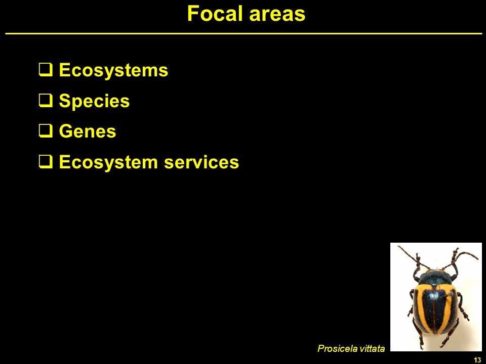13 Focal areas Ecosystems Species Genes Ecosystem services Prosicela vittata