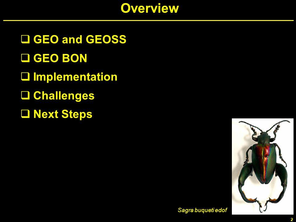 2 Overview GEO and GEOSS GEO BON Implementation Challenges Next Steps Sagra buqueti edof