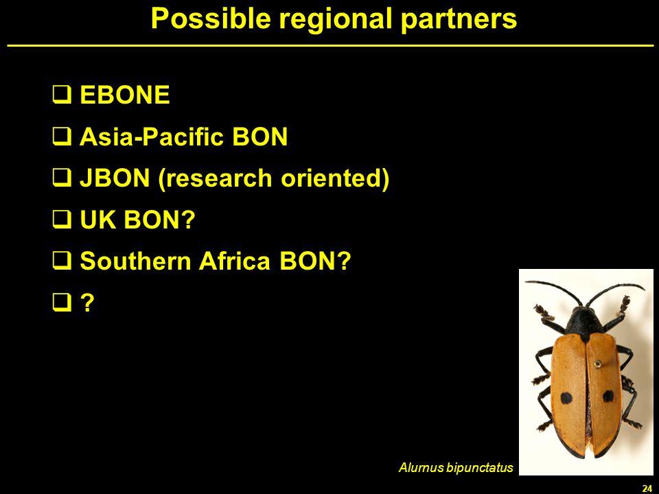 24 Possible regional partners EBONE Asia-Pacific BON JBON (research oriented) UK BON? Southern Africa BON? ? Alurnus bipunctatus
