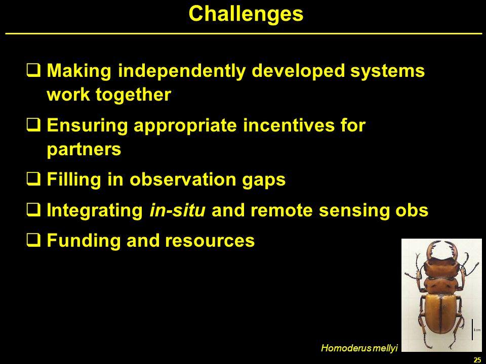 25 Challenges Making independently developed systems work together Ensuring appropriate incentives for partners Filling in observation gaps Integratin