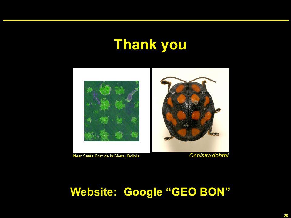28 Cenistra dohrni Near Santa Cruz de la Sierra, Bolivia Website: Google GEO BON Thank you
