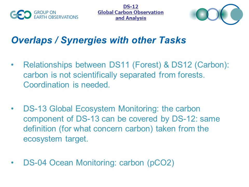 Overlaps / Synergies with other Tasks Relationships between DS11 (Forest) & DS12 (Carbon): carbon is not scientifically separated from forests. Coordi