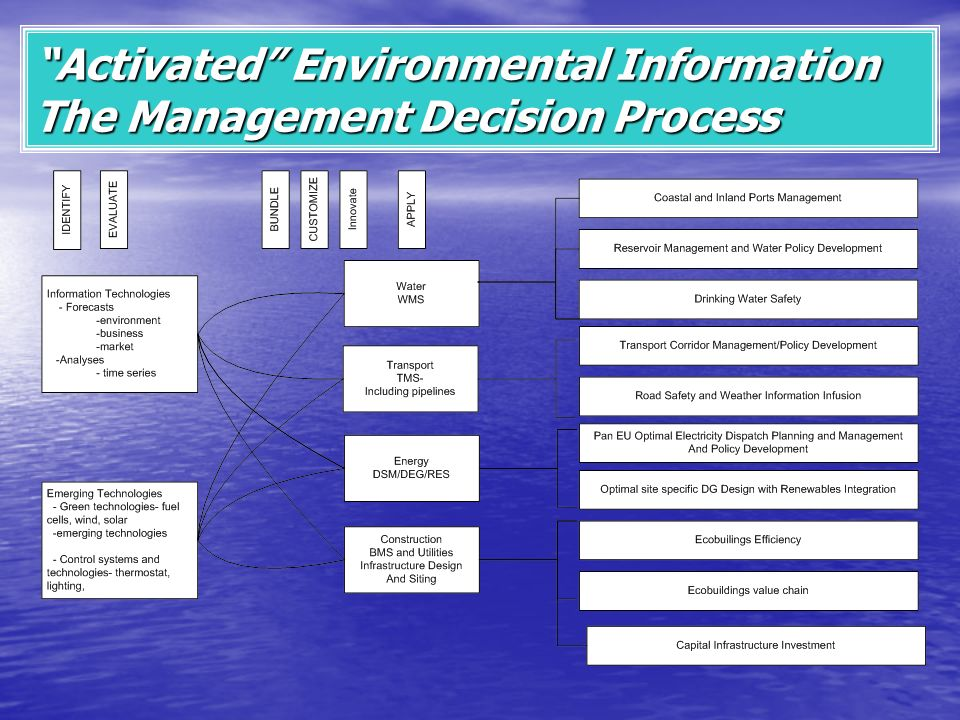 Activated Environmental Information The Management Decision Process