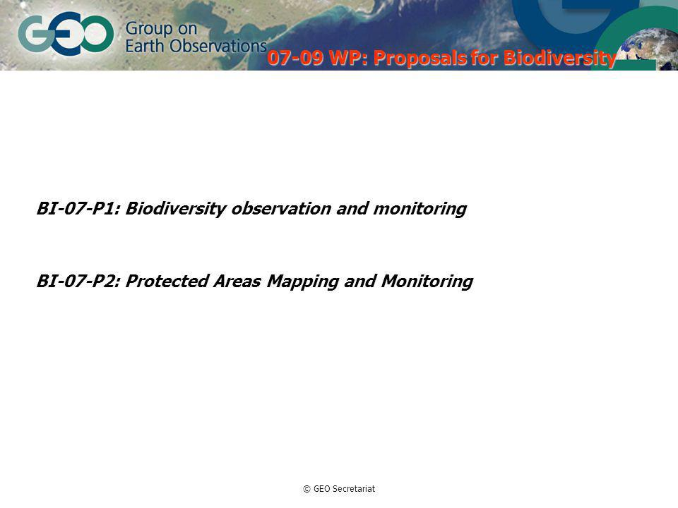 © GEO Secretariat BI-07-P1: Biodiversity observation and monitoring BI-07-P2: Protected Areas Mapping and Monitoring WP: Proposals for Biodiversity