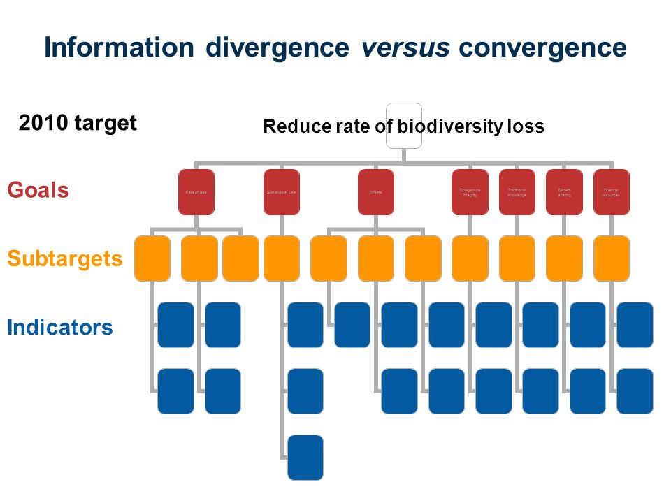 Information divergence versus convergence Reduce rate of biodiversity loss Rate of lossSustainable useThreats Ecosystems Integrity Traditional knowledge Benefit sharing Financial resources Indicators Goals Subtargets 2010 target