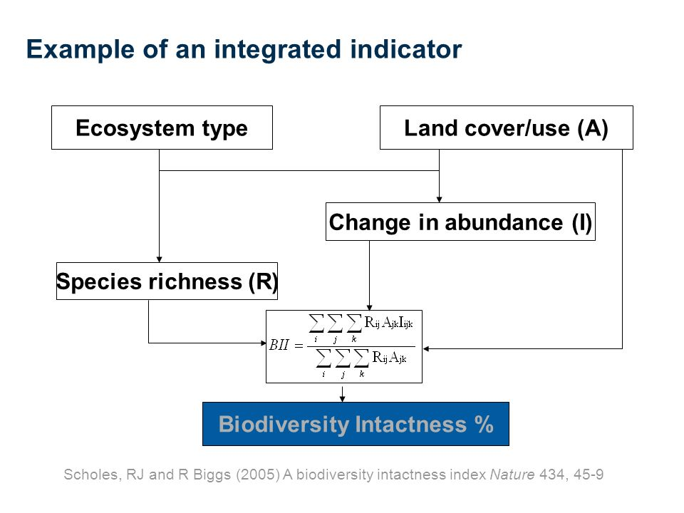Example of an integrated indicator Biodiversity Intactness % Species richness (R) Change in abundance (I) Land cover/use (A)Ecosystem type Scholes, RJ and R Biggs (2005) A biodiversity intactness index Nature 434, 45-9
