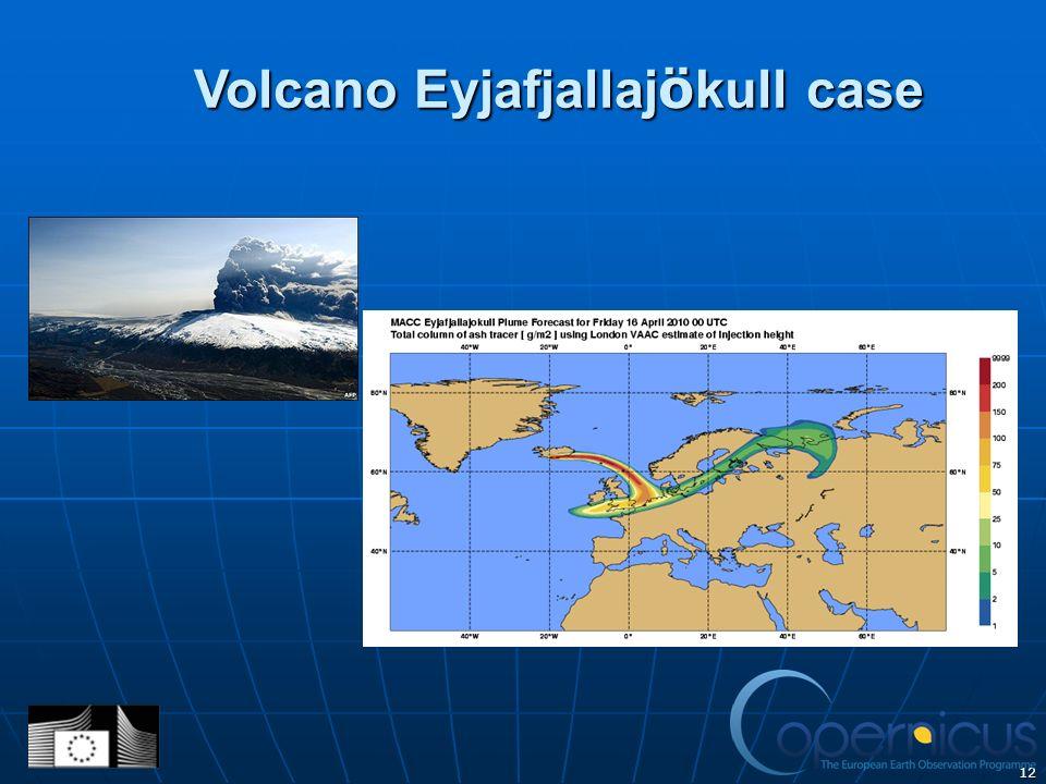 12 Volcano Eyjafjallaj ö kull case