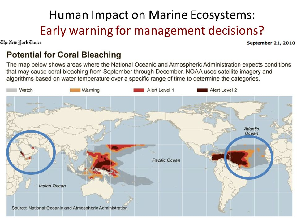 Human Impact on Marine Ecosystems: Early warning for management decisions?