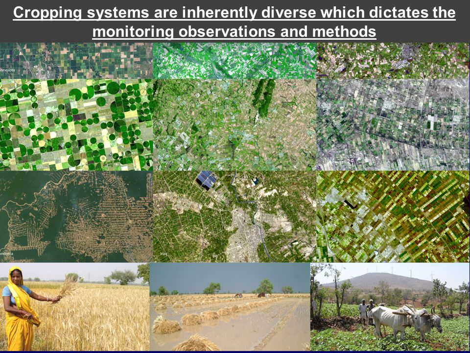 Cropping systems are inherently diverse which dictates the monitoring observations and methods