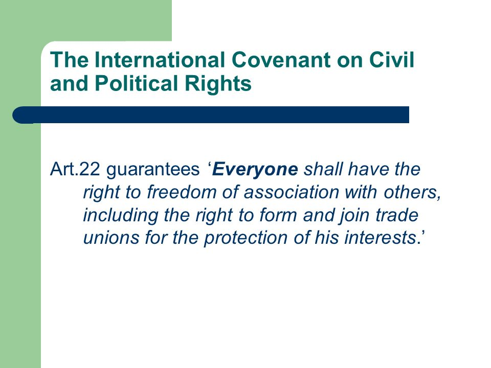 The International Covenant on Civil and Political Rights Art.22 guarantees Everyone shall have the right to freedom of association with others, including the right to form and join trade unions for the protection of his interests.