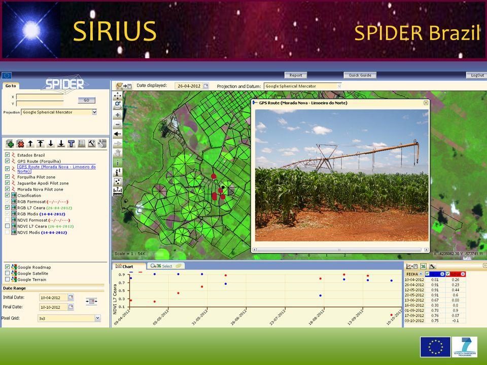 2 6 2 9 0 2 1 SIRIUS SPIDER Brazil