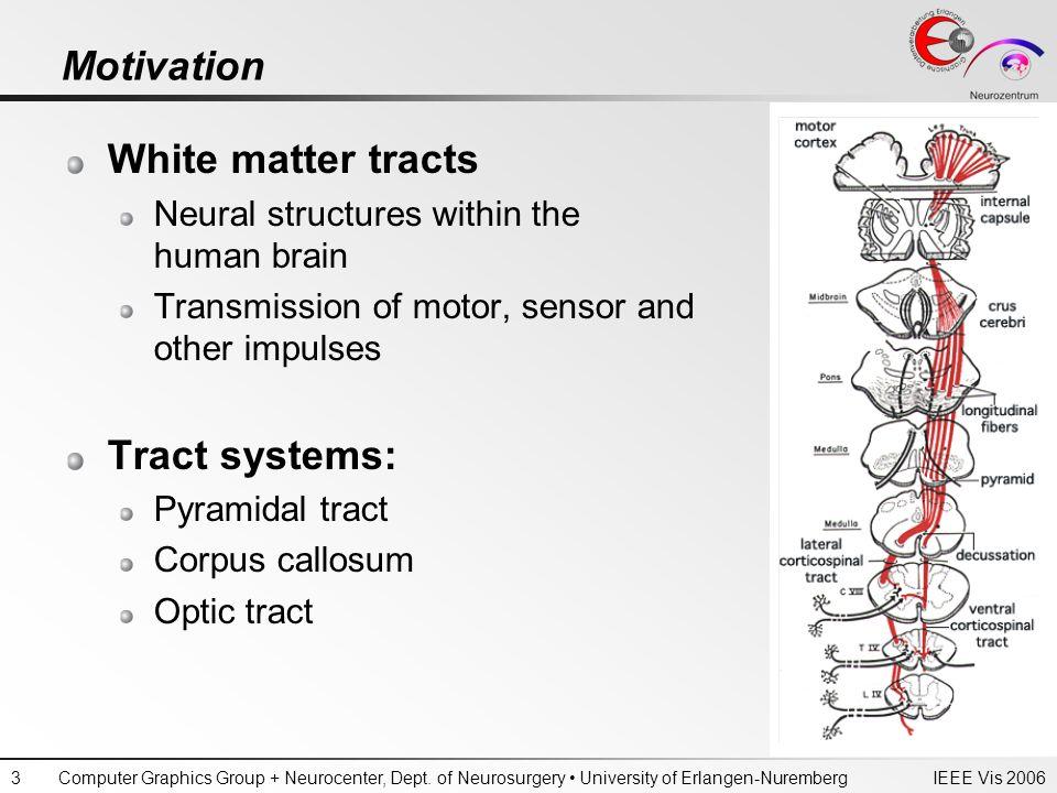 IEEE Vis 2006Computer Graphics Group + Neurocenter, Dept. of Neurosurgery University of Erlangen-Nuremberg3 Motivation White matter tracts Neural stru