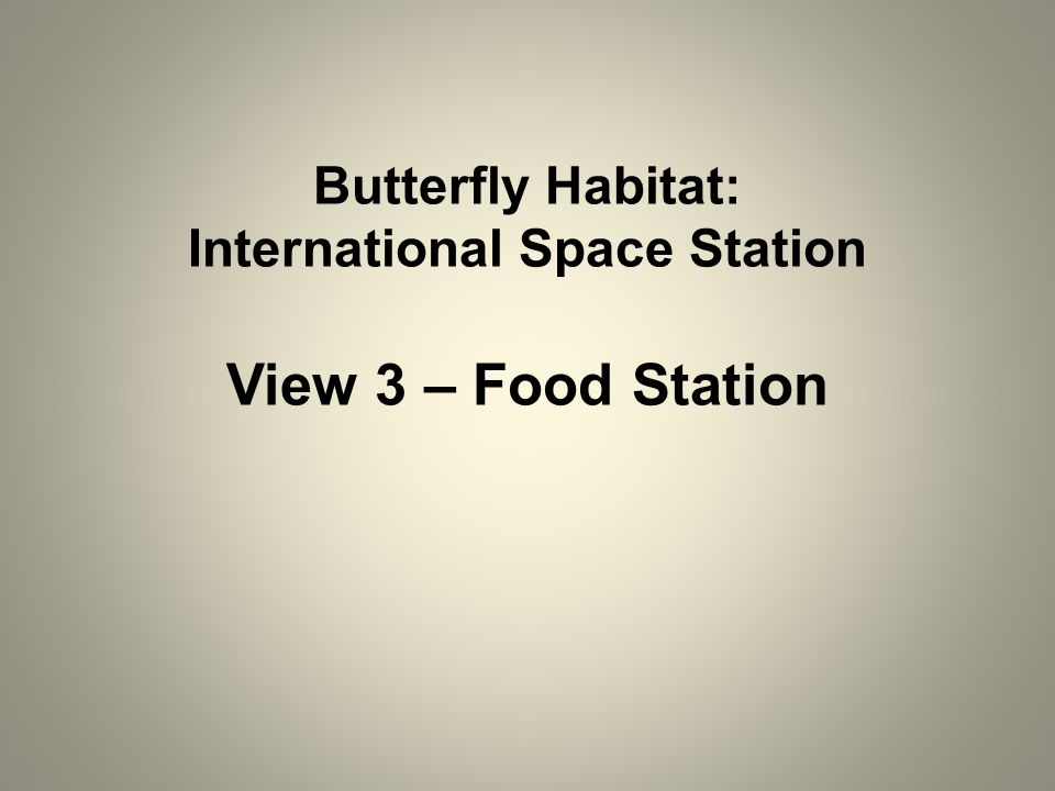 Butterfly Habitat: International Space Station View 3 – Food Station