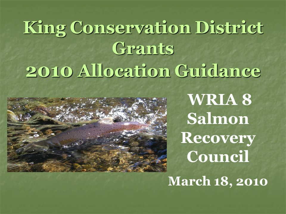 King Conservation District Grants 2010 Allocation Guidance WRIA 8 Salmon Recovery Council March 18, 2010