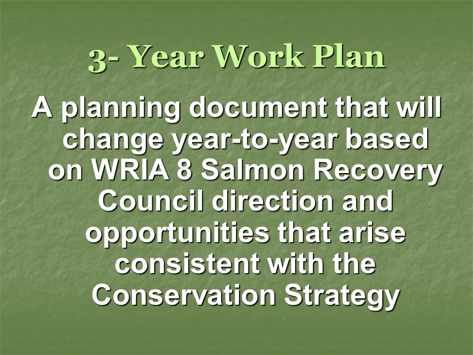 3- Year Work Plan A planning document that will change year-to-year based on WRIA 8 Salmon Recovery Council direction and opportunities that arise consistent with the Conservation Strategy