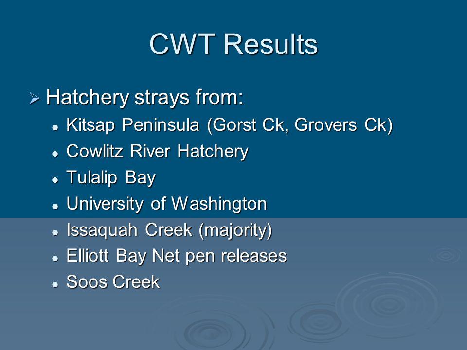 CWT Results Hatchery strays from: Hatchery strays from: Kitsap Peninsula (Gorst Ck, Grovers Ck) Kitsap Peninsula (Gorst Ck, Grovers Ck) Cowlitz River