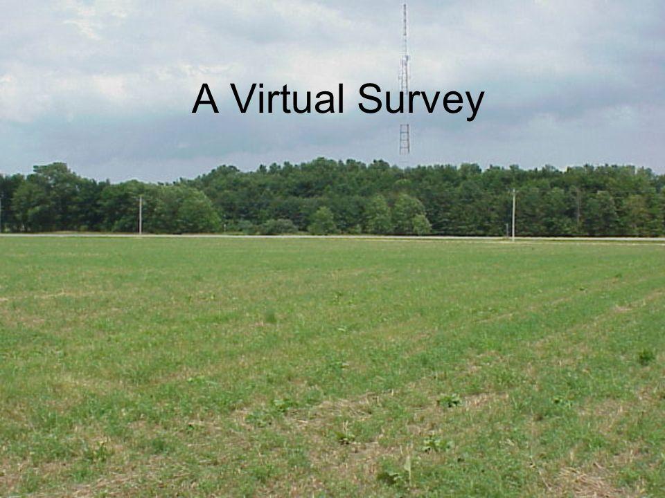 A Virtual Survey