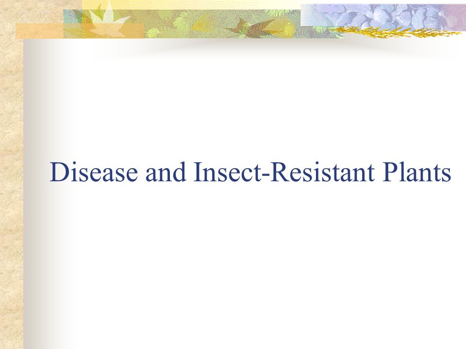 Disease and Insect-Resistant Plants